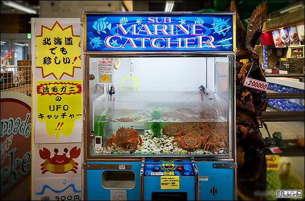 Японский торговый автомат по продаже живых омаров